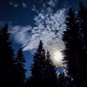 Harzer Wandernadel bei Nacht
